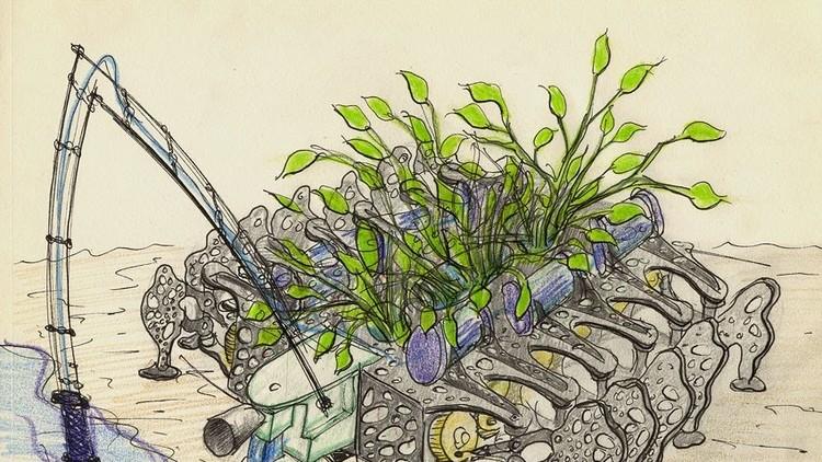 Plantas nómadas y robots parásito muestran cómo cambiar nuestra relación con el medio ambiente
