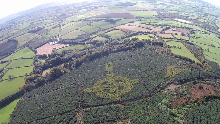 Video, fotos: Un dron capta un símbolo religioso gigante que se escondía en un bosque de Irlanda
