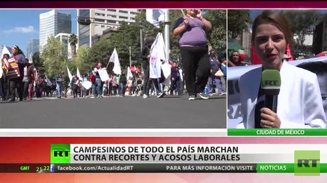Campesinos de México marchan contra recortes y acosos laborales