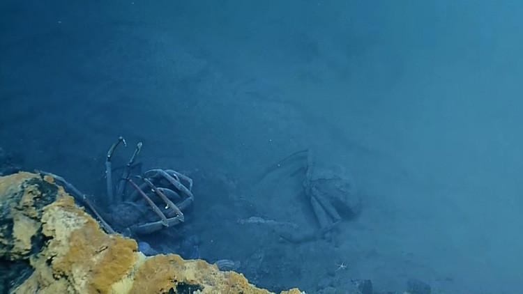 """El extraño 'lago' en el Golfo de México de donde """"nadie regresa vivo"""""""