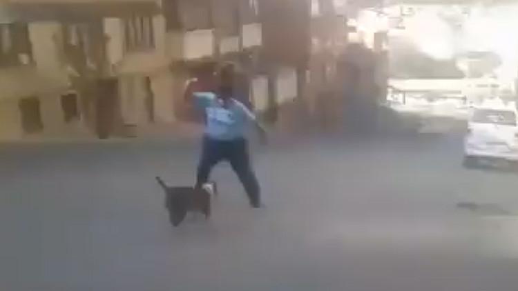 Polémico video: Un hombre se defiende de un pitbull con un machete