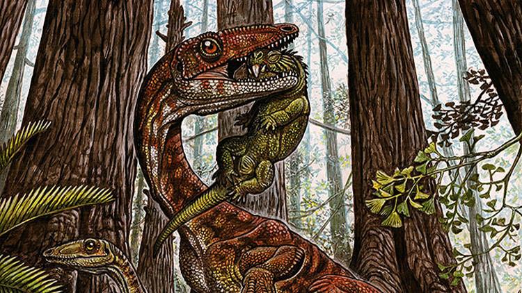 Fósiles hallados en Brasil obligan a reescribir la historia de los dinosaurios