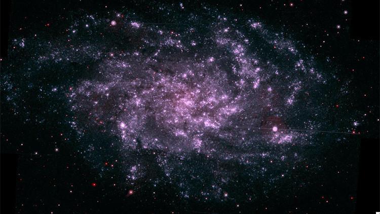 ¿Vivimos dentro de un extraterrestre?: Un científico sugiere por qué no encontramos vida alienígena