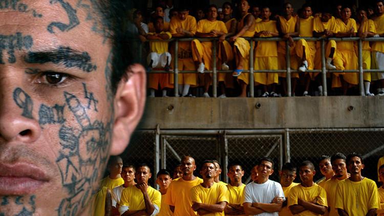"""Un """"ejército de moscas"""" tiene de rodillas a El Salvador y ya controla más del 90% de su territorio"""