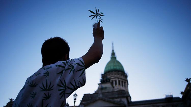 Argentina está a un paso de autorizar el uso medicinal del cannabis