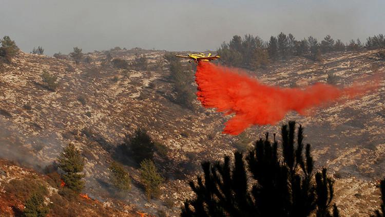 Israel en llamas: Tel Aviv pide ayuda del exterior para combatir varios incendios (Videos)