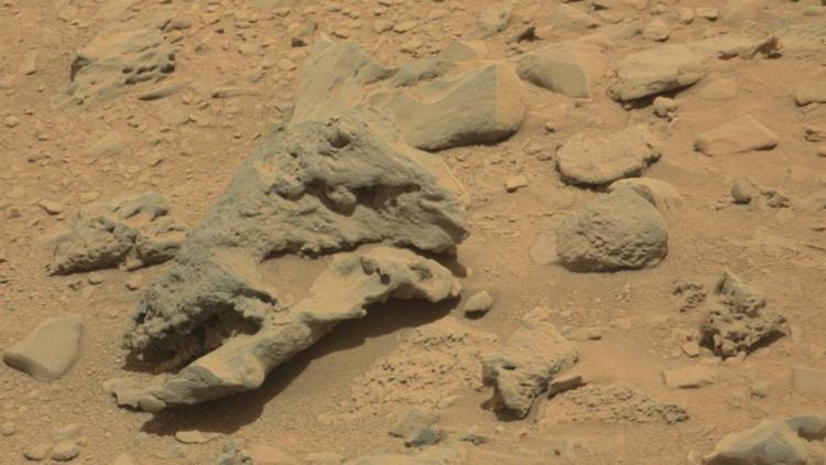 'Parque Jurásico' en Marte: Encuentran un 'cráneo de dinosauro' en una imagen de la NASA