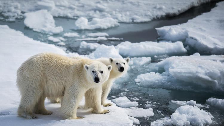 Rusia pierde varias islas a causa del calentamiento global