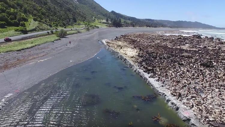 El lecho marino queda a la vista tras el terremoto de 7,8 en Nueva Zelanda (video)