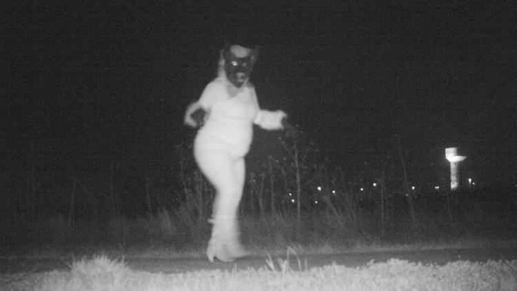 FOTOS: Buscan capturar a un animal salvaje y descubren unas imágenes muy extrañas