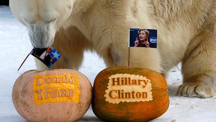 Estados Unidos / Elecciones  Presidenciales . - Página 2 5820e7d8c36188232d8b45fe