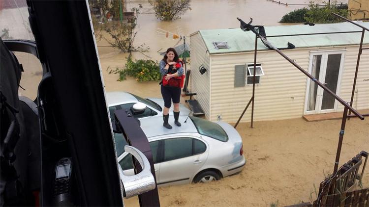 FOTOS: Decenas de animales amenazados por las inundaciones que azotan el sur de España