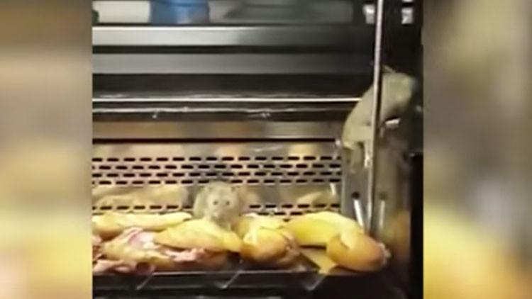 'Ratatouille': Clausuran una panadería madrileña al descubrir ratas en los mostradores (VIDEO)