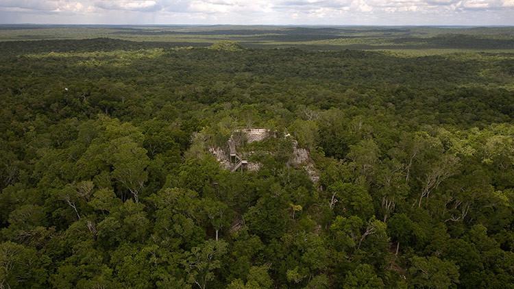 """FOTO: Encuentran en las selvas de Guatemala """"la primera red de supercarreteras del mundo"""""""