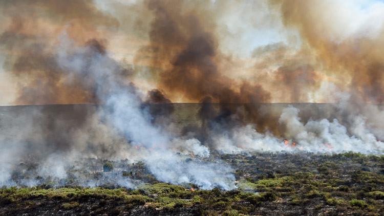 Un enorme incendio arrasa con un millón de hectáreas en Argentina (FOTOS, VIDEO)