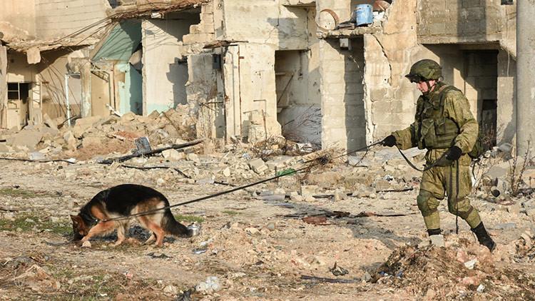"""El Pentágono: EE.UU. """"lucha solo"""" en Siria mientras Rusia """"no hace nada"""""""