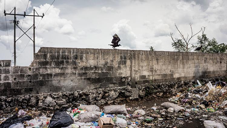 """""""Restricciones de Trump en la frontera de México fortalecerán a los carteles de la droga"""""""