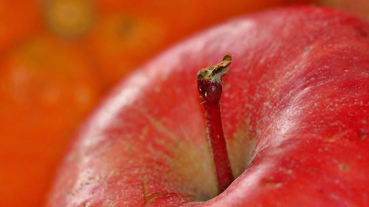 Una empresa canadiense testea en ciudadanos de EE.UU. manzanas que no se oxidan