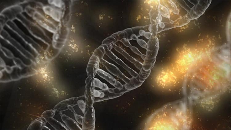 Nueva forma de vida: Científicos crean unos organismos con ADN sintético
