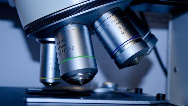 Científicos rusos hallan propiedades únicas de células que ayudarán a combatir el cáncer