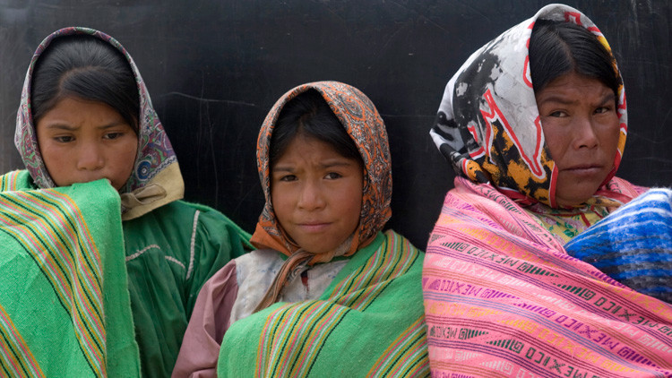 Gobierno de México: sin lenguas indígenas en sus sitios web