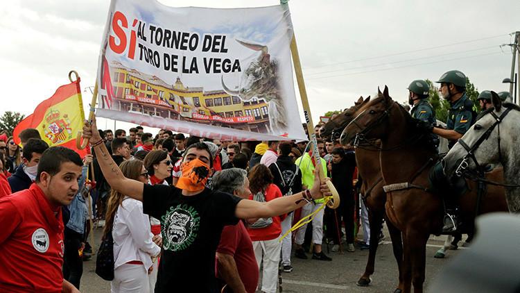 Dos años de cárcel para una defensora del Toro de la Vega por agredir a una joven antitaurina