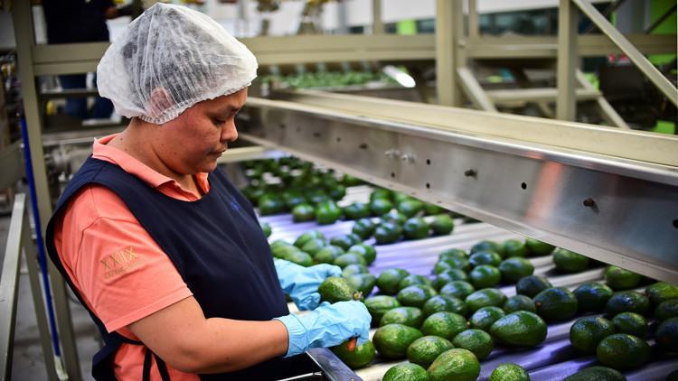 ¿Sobre qué productos mexicanos recaerían los aranceles de EE.UU.?