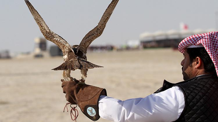 FOTO: Los internautas se ríen del príncipe saudita que compró 80 billetes de avión para sus halcones