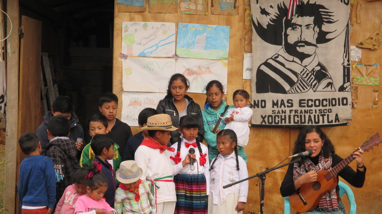 Un proyecto hermana la música del son jarocho y los pueblos indígenas en resistencia en México