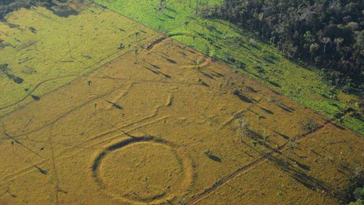 """""""Descubrimiento clave"""": Hallan 450 geoglifos de 2.000 años de antigüedad en la Amazonía (FOTOS)"""