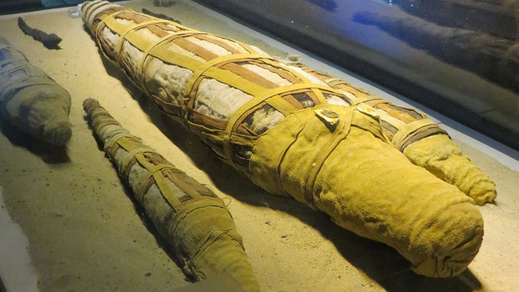 Arqueólogos hallan en Egipto la momia de un cocodrilo de 4 metros