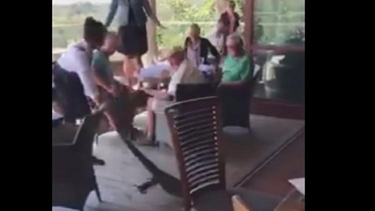 Esta valiente camarera no duda en sacar del bar a un dragón de Komodo arrastrándolo por la cola