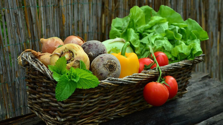 """El popular vegetal de América Latina que contiene """"un potente veneno"""""""