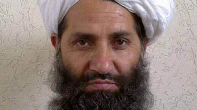 """""""Plantar árboles"""": el insólito llamamiento del líder de los talibanes"""