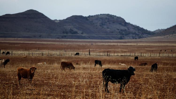El cambio climático podría provocar migraciones de EE.UU. a México