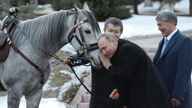 Regalan a Putin un caballo pura sangre: ¿Quiere saber cuáles son sus otras mascotas? (VIDEO, FOTOS)