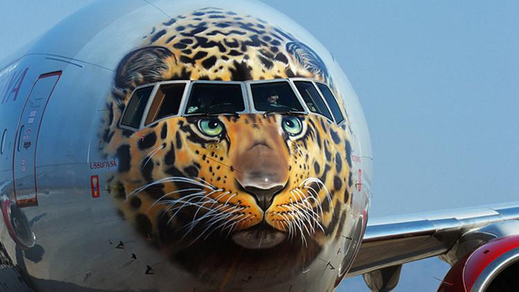 'Leopardoavión': aerolínea rusa decora un Boeing 777 como un leopardo para salvarlo de la extinción