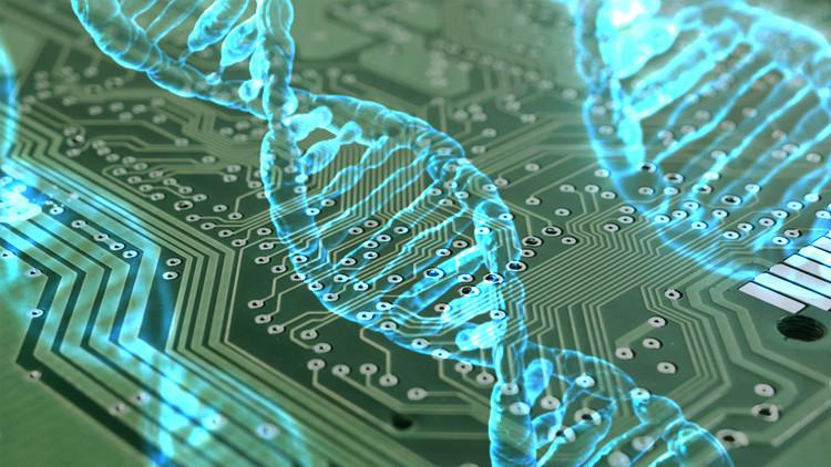 Científicos planean construir un computador con moléculas de ADN con capacidad de autorreplicación