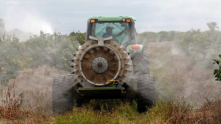 """La ONU desmonta el """"mito"""" de que los plaguicidas son necesarios para nuestra alimentación"""