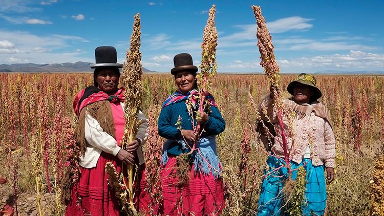 Mujeres bolivianas avanzan en su lucha por ocupar cargos en el Estado
