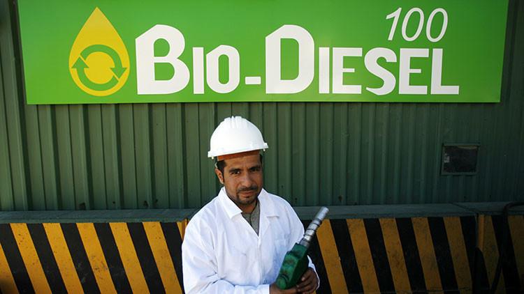 México y las nuevas energías: de la gallina de los huevos de oro a la gallina del biodiésel