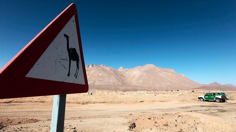 Un arqueólogo responsabiliza a la acción humana del surgimiento del Sáhara