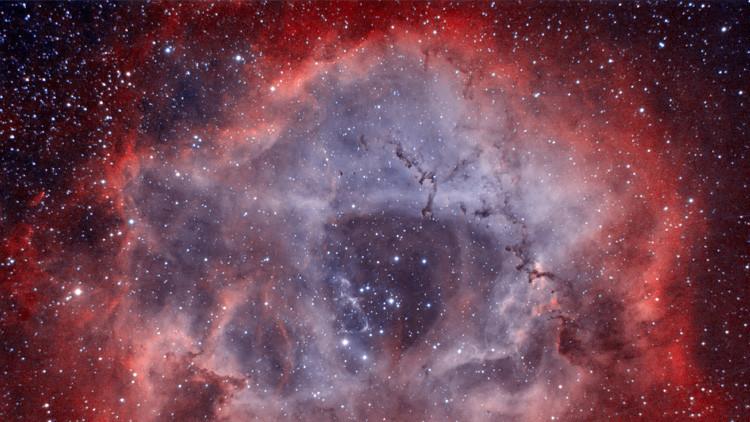 Fotos: La NASA publica imágenes de estrellas fugitivas