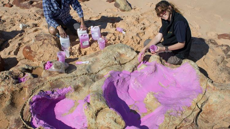 Los dinosaurios más grandes dejaron sus huellas en una costa 'jurásica' de Australia
