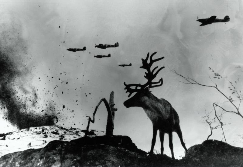 las impactantes imágenes de la segunda guerra mundial que quizás