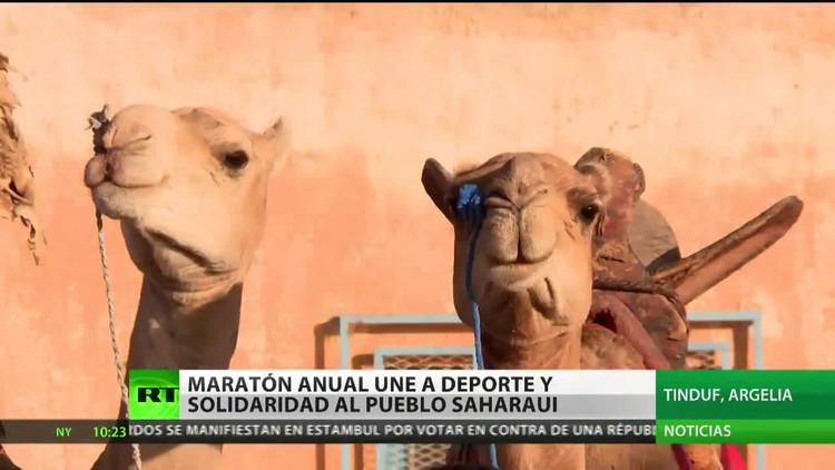 Maratón anual une a deporte y solidaridad al pueblo saharaui