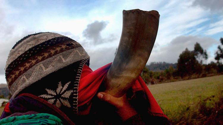 Crean un 'software' para aprender el idioma mapuche en una universidad de Chile
