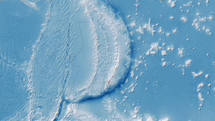 Encuentran señales de vida en la Fosa de las Marianas