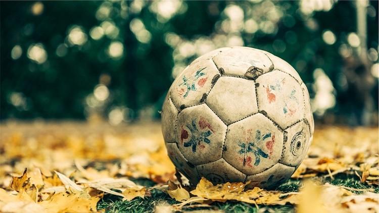 Abuela podría ser demandada por robo por no devolver las pelotas de los niños que caen a su jardín