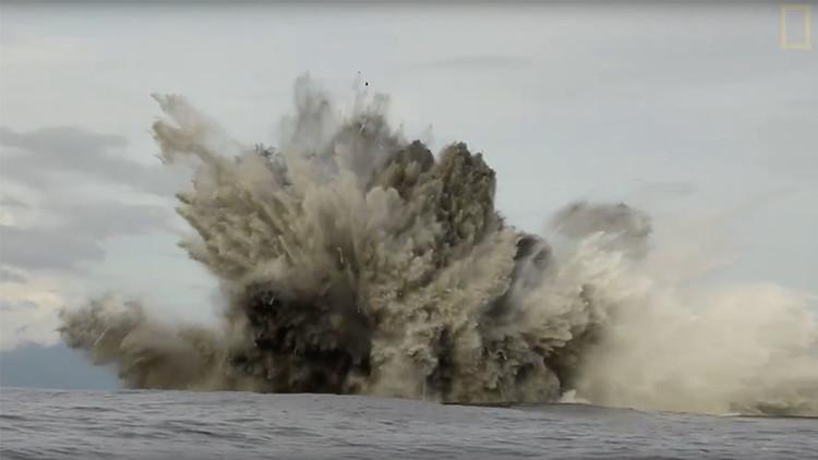 'Sharkcano': Un robot filma al misterioso tiburón morador de volcanes submarinos (Video)